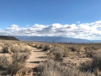 View of Sandia Mountains and Albuquerque from Return Trail