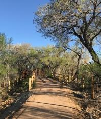 The Bridge - Mile 2 - Rio Grande - Albuquerque