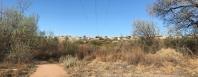 What a View - Rio Grande - Albuquerque