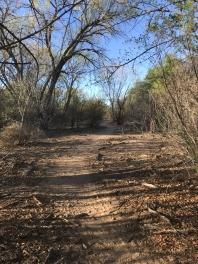 The Trail - Rio Grande - Albuquerque
