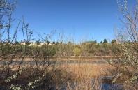 Break Spot - Rio Grande - Albuquerque